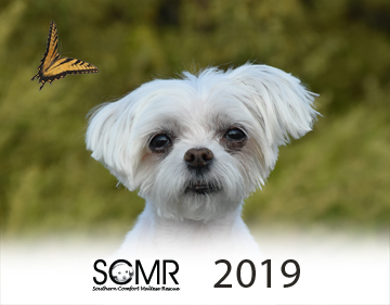 Click here to order your SCMR calendar!